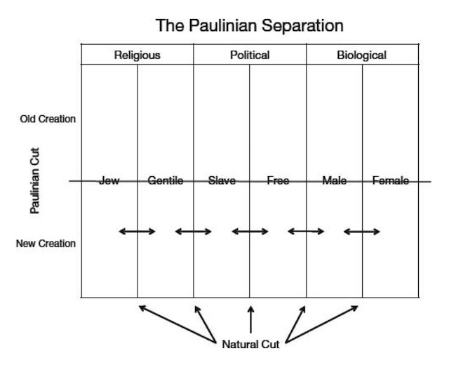 Peter Rollins - The Paulinian Separation